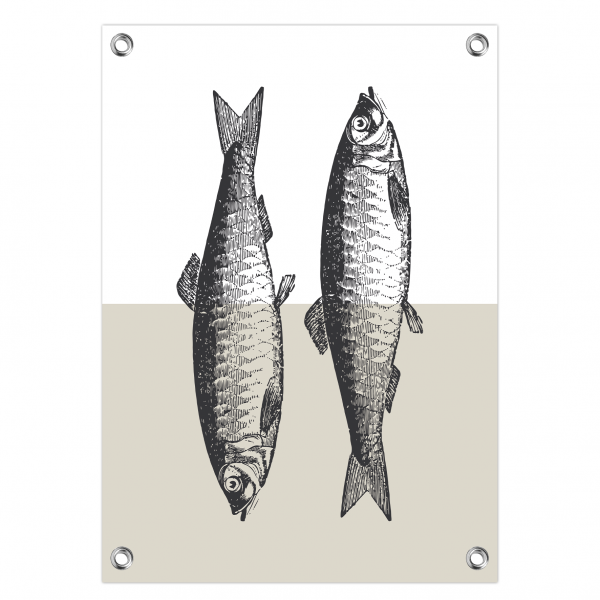 Tuinposter Fish grijs