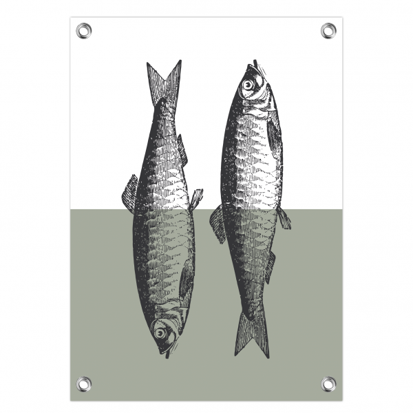 Tuinposter Fish mint