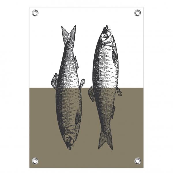Tuinposter Fish olijf