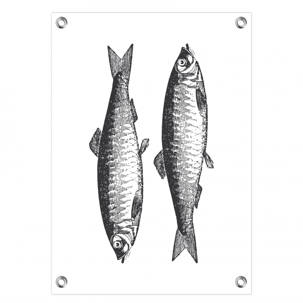 Tuinposter Fish wit