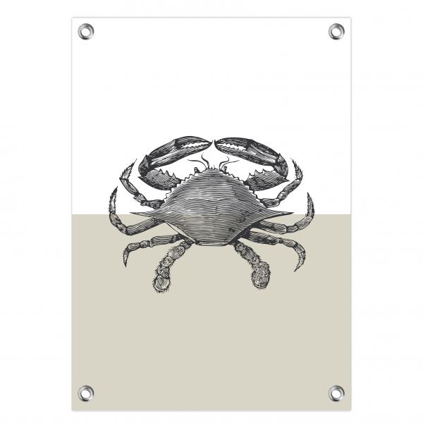 Tuinposter Crab grijs