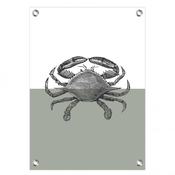 Tuinposter Crab mint