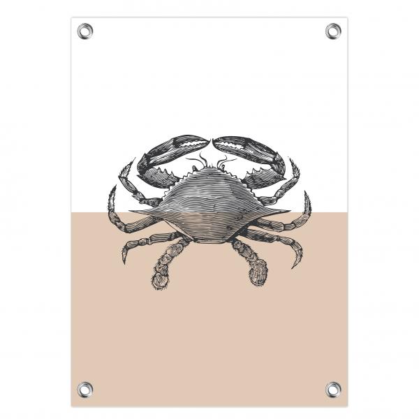 Tuinposter Crab roze
