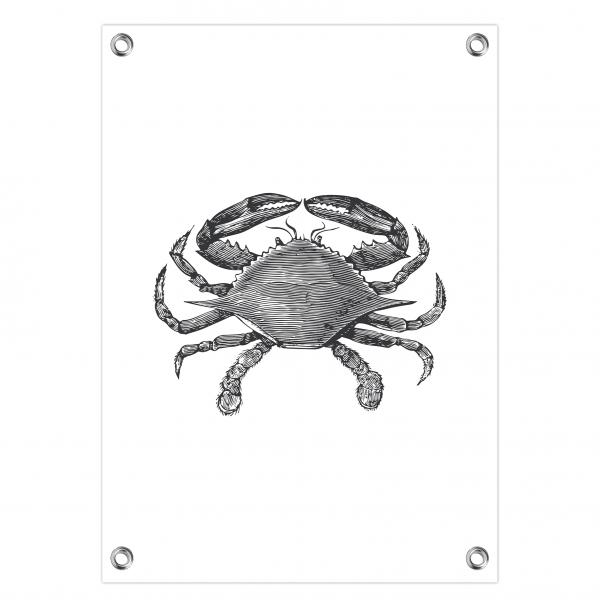 Tuinposter Crab wit