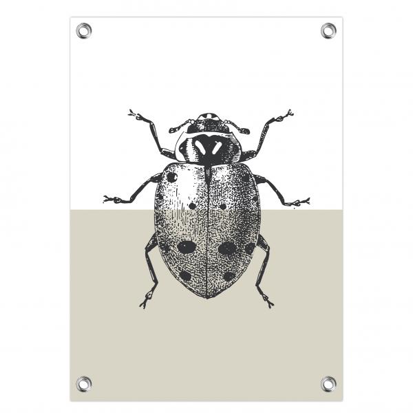 Tuinposter Ladybug grijs