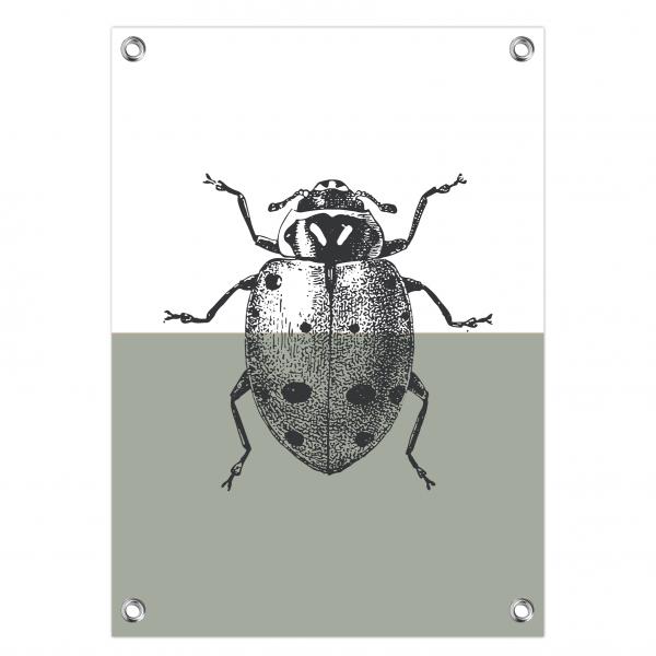 Tuinposter Ladybug mint