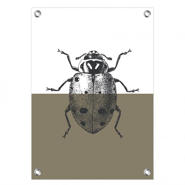Tuinposter Ladybug olijf