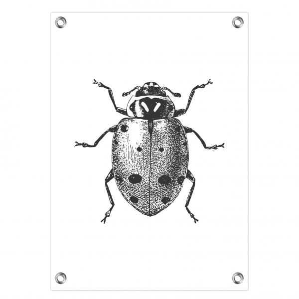 Tuinposter Ladybug wit