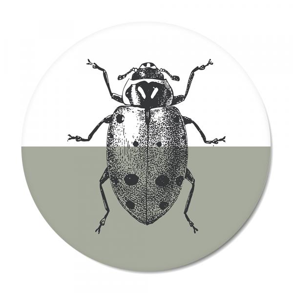 Vintage - ladybug - mint