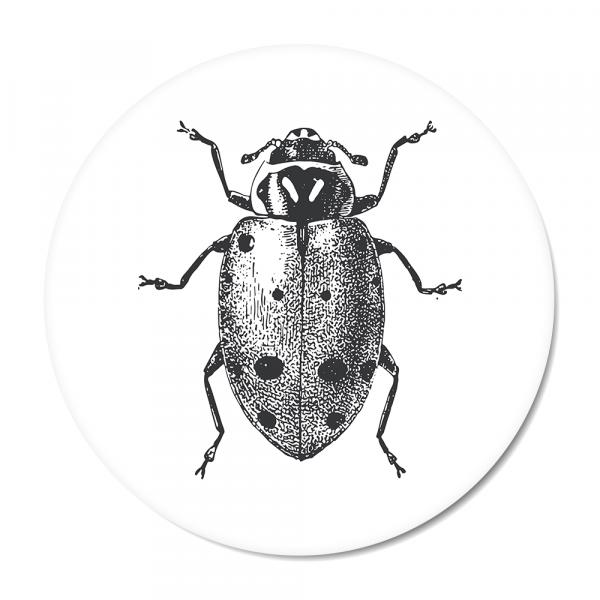 Vintage - ladybug - wit